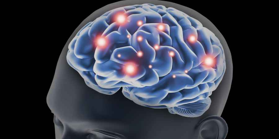 Stem Cells Restore Cognitive Abilities Impaired By Brain Tumor Treatment